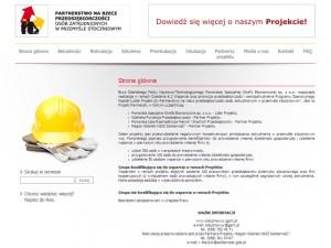 Widok strony głównej witryny PSSE